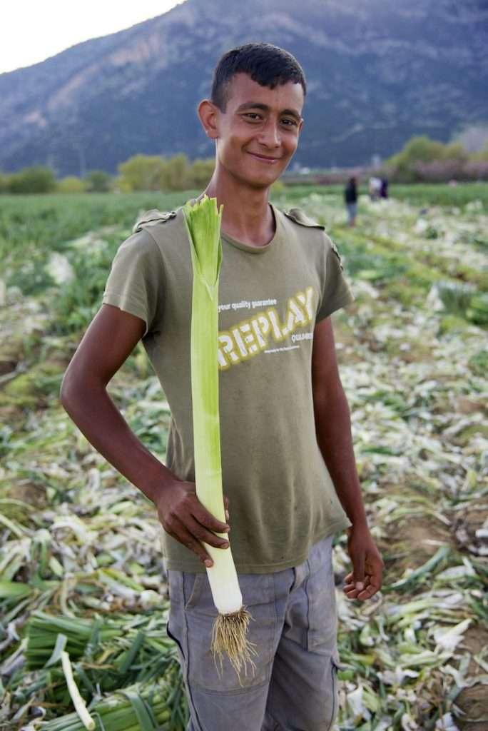 Young man holding single leek in field near Kusadasi, Turkey by Ralph Velasco