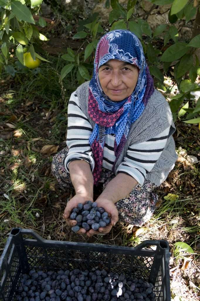 Woman in Shade with Crate of Olives in Hands at Vineyard P - Kalkan, Turkey by Ralph Velasco
